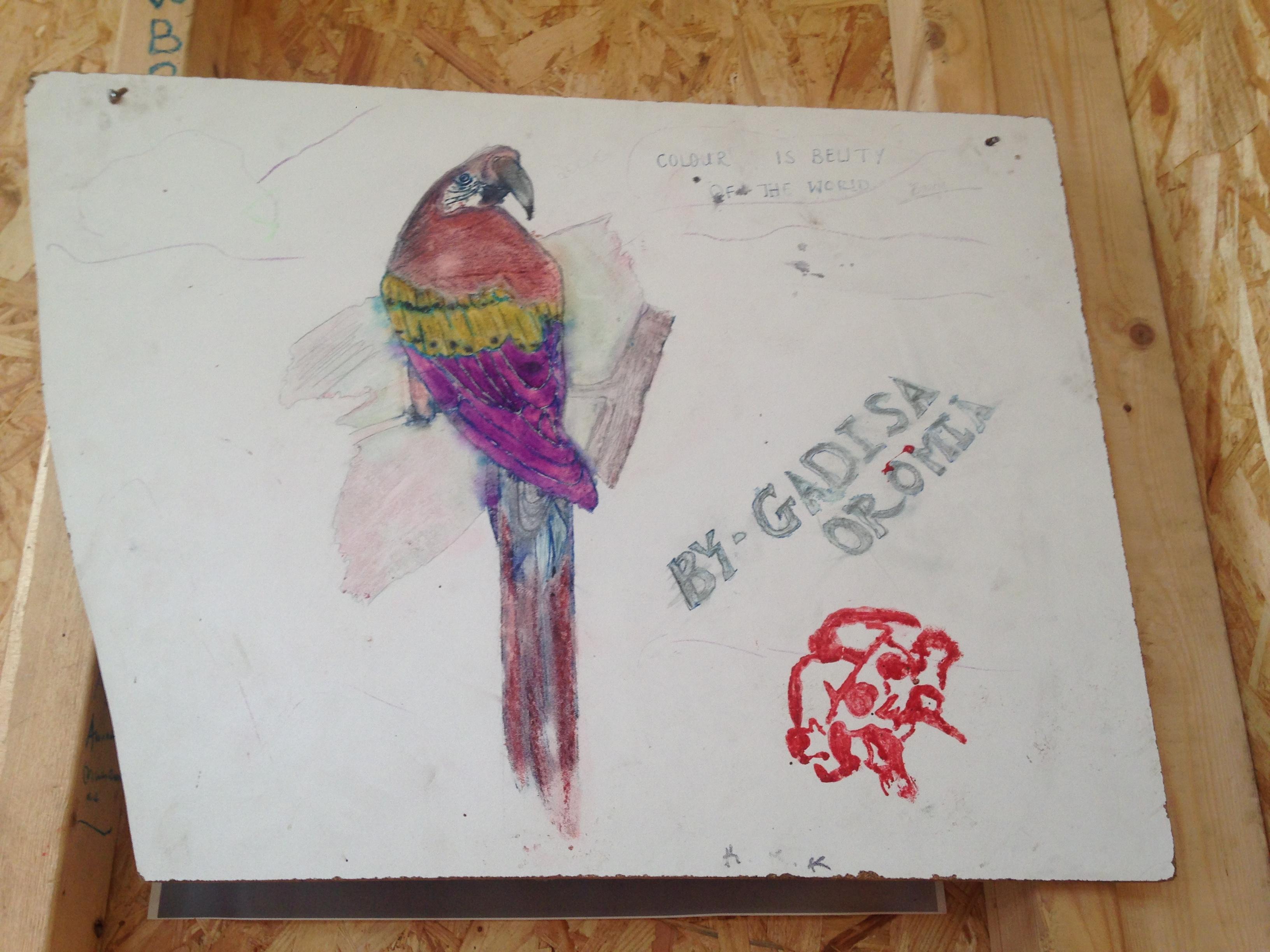 Photo : sur une feuille blanche, un dessin d'enfant représente un perroquet multicolore.