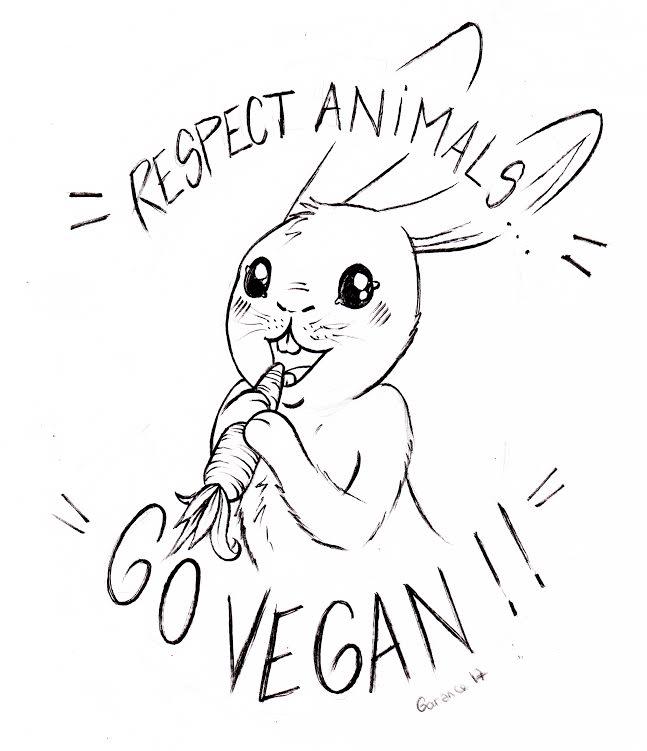 """Dessin au feutre noir : Un petit lapin cartoonesque croque, tout heureux, dans une carotte qu'il tient à deux pattes. Au dessus, on peut lire, en arc de cercle : """"Respect animals"""". Et en dessous, sur un arc de cercle complémentaire au premier, on lit, en majuscules : """"GO VEGAN""""."""