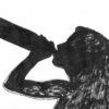 LE COMBAT D'UNE MAMAN : LES RAVAGES DE L'ALCOOL